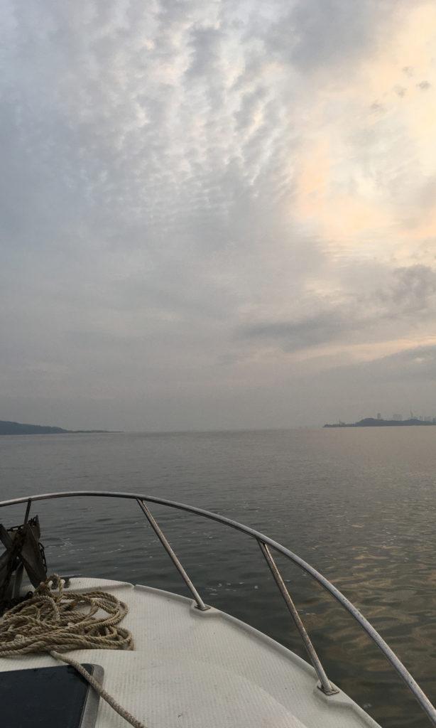 海は絶好の釣り日和。